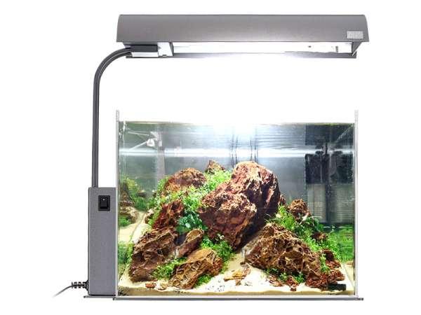 Die Aquarien-Beleuchtung
