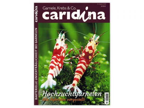 caridina - Garnelen, Krebse & Co :: Wirbellosen-Magazin, Dähne-Verlag, Ausgabe 3/2021