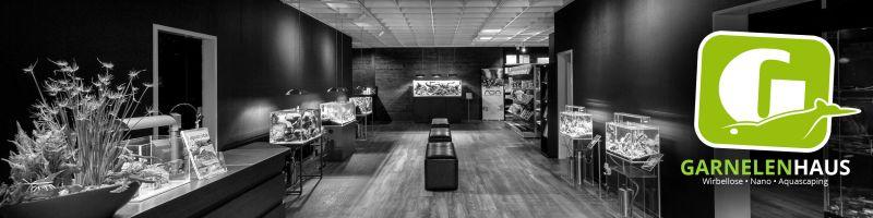 zwerggarnelen aquascaping garnelenhaus. Black Bedroom Furniture Sets. Home Design Ideas
