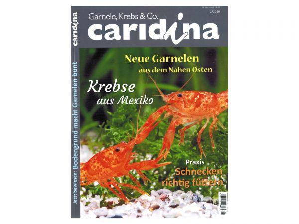 caridina - Garnelen, Krebse & Co :: Wirbellosen-Magazin, Dähne-Verlag, Ausgabe 2/2020