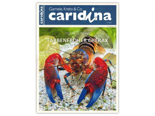 caridina - Garnelen, Krebse & Co :: Wirbellosen-Magazin, Dähne-Verlag, Ausgabe 2/2019