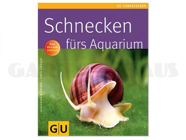 Schnecken fürs Aquarium - Ratgeber