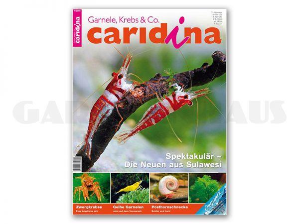 caridina, Heft 1/2008