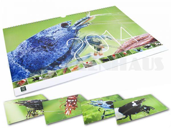 Garnelen - Kalender 2014 v. Chris Lukhaup