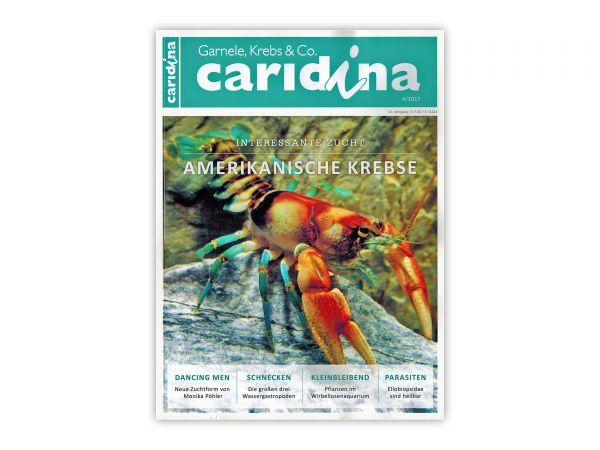 caridina-wirbellose-magazin-zeitschrift-ausgabe-4-2017