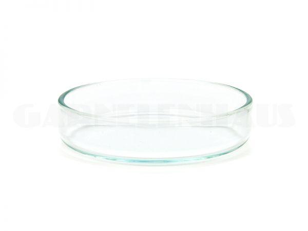 Futterschale Glas, 53/15 mm