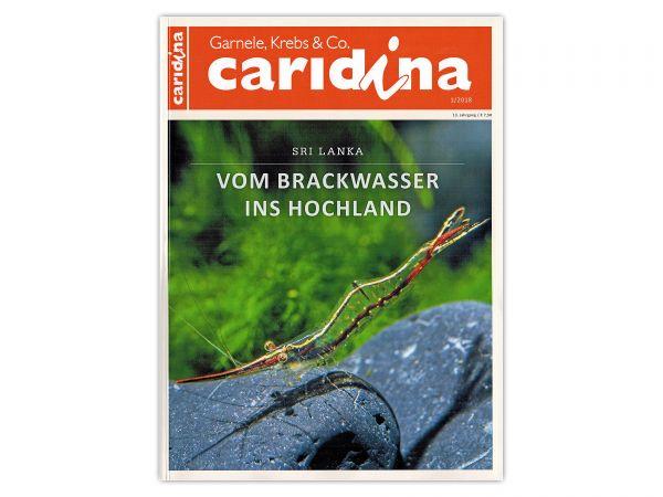 caridina-wirbellose-magazin-zeitschrift-ausgabe-1-2018