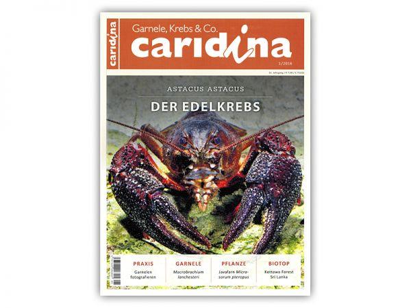 caridina, Heft 1/2016