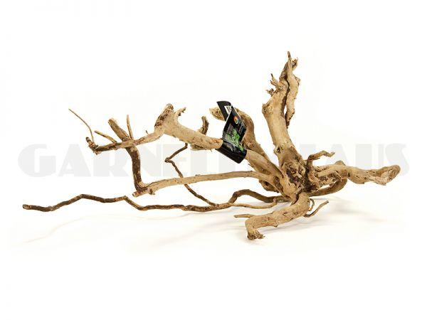 Spiderwood M, ca. 30-40 cm