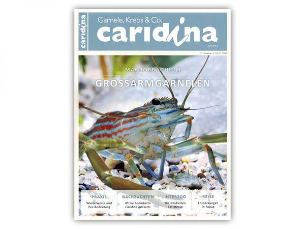 caridina, Heft 3/2016