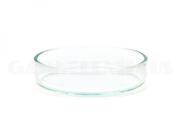 Futterschale Glas, 55/13 mm