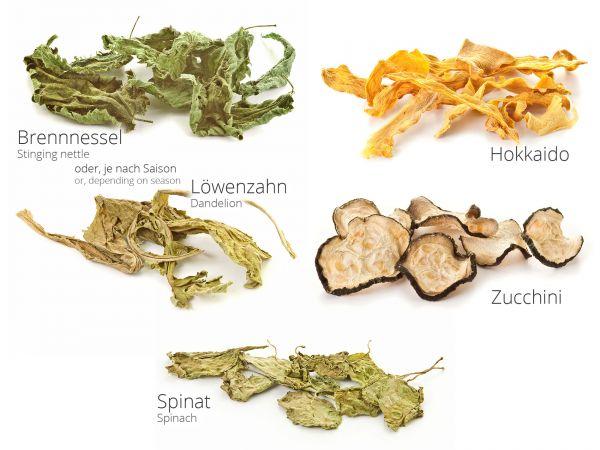Gemüsemix als Garnelenfutter - Brennnessel, Löwenzahn, Zucchini, Hokkaido, Spinat