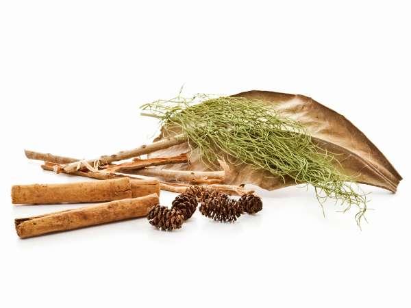 Hausmittel und Heilmittel aus der Natur