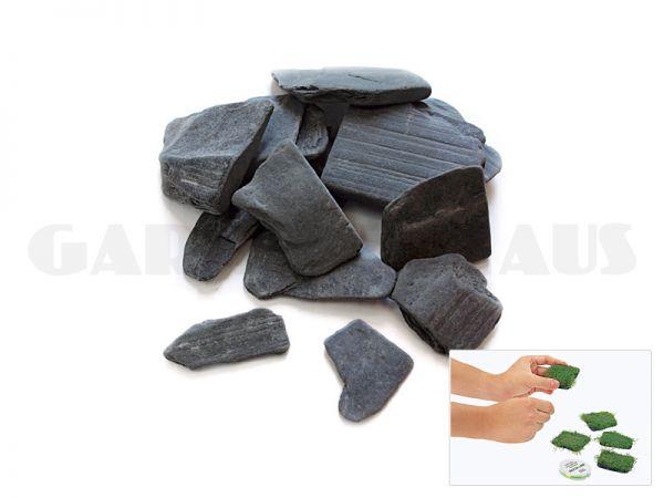 Riccia Stones, 10 Stk.